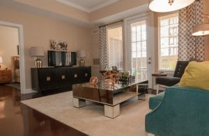 One Bedroom Apartment Rental in Baton Rouge